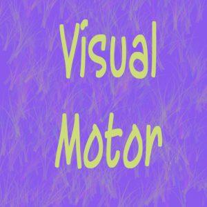 Visual motor
